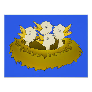 Hungry chicks in a nest poster