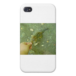 Hungry Chipmunk iPhone 4 Cases