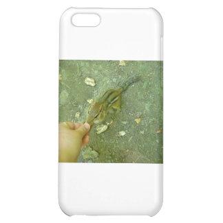 Hungry Chipmunk iPhone 5C Case