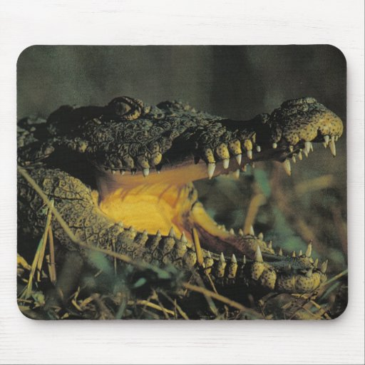 Hungry Croc Mouse Mat