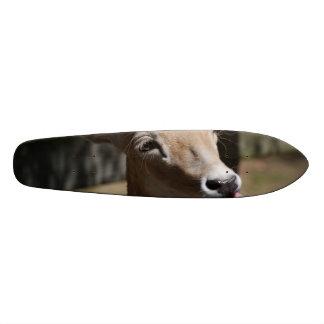 Hungry Deer Skate Decks