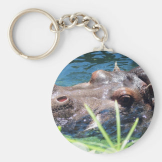 Hungry Hippo Keychain