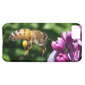 Hungry Honey Bee and Lilacs iPhone 5C Case