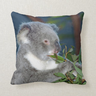 Hungry Koala Cushion