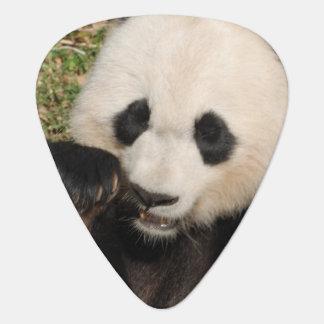 Hungry Panda Plectrum