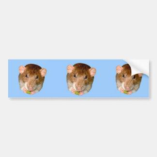 Hungry Rat Bumper Sticker