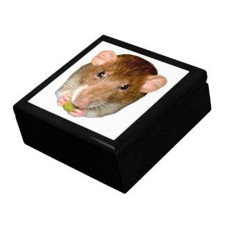 Hungry Rat Gift Box
