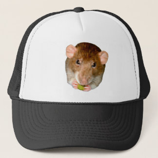 Hungry Rat Hat