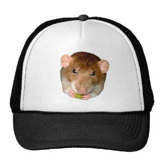 Hungry Rat Hat
