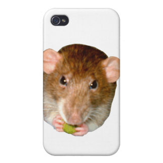 Hungry Rat  iPhone 4/4S Case