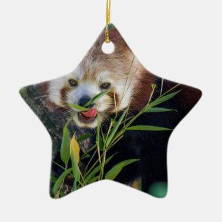 hungry Red panda Ceramic Star Decoration