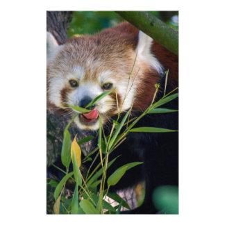 hungry Red panda Customized Stationery
