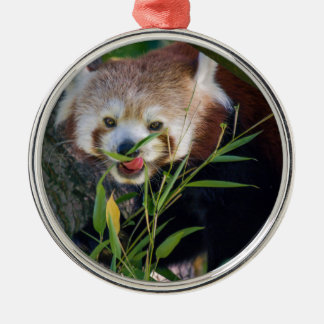 hungry Red panda Silver-Colored Round Decoration