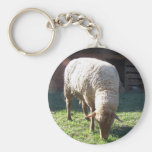 hungry sheep basic round button key ring