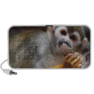 Hungry Squirrel Monkey  Portable Speakers