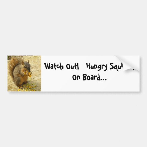 Hungry Squirrel Products Bumper Sticker