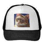 Hunter Orange Tabby Ginger cat painting art Trucker Hats