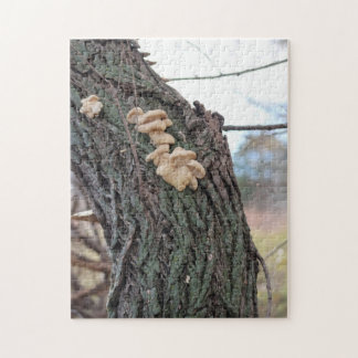 Hunting For Mushrooms Jigsaw Puzzle