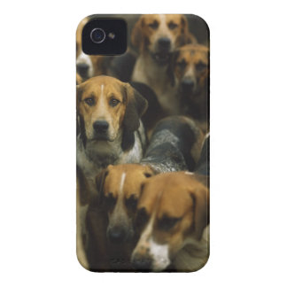 Hunting foxhounds, Galway Blazers, Ireland iPhone 4 Case