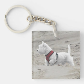 Hunting in the Dunes Double-Sided Square Acrylic Key Ring