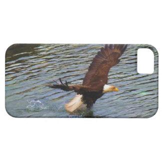 Hunting Mature Bald Eagle Wildlife Art iPhone 5 Cases