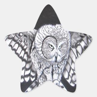 Hunting Owl Star Sticker