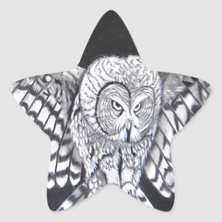 Hunting Owl Star Stickers