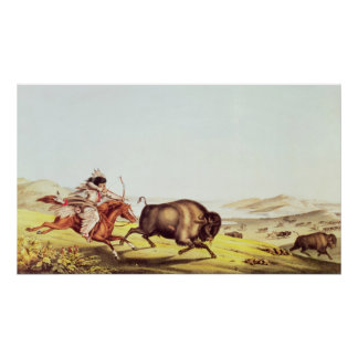 Hunting the Buffalo Poster