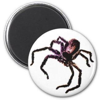 Huntsman Spider 6 Cm Round Magnet