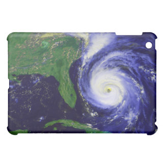 Hurricane Fran iPad Mini Cases