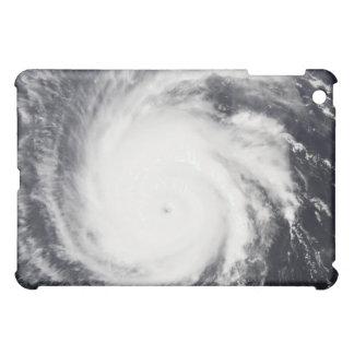 Hurricane Frances Cover For The iPad Mini