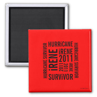 Hurricane Irene Survivor Flag Magnet 5