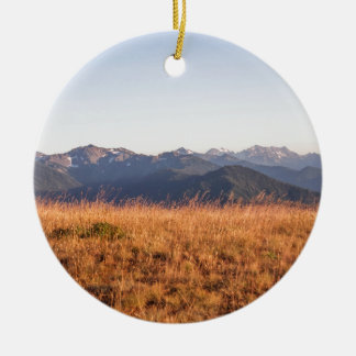 Hurricane Ridge Olympic National Park Gift Christmas Ornament