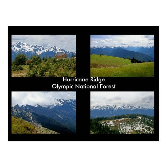 Hurricane Ridge postcard