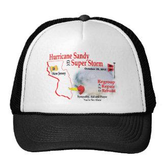 Hurricane Sandy Super Storm Regroup Repair Rebuild Cap