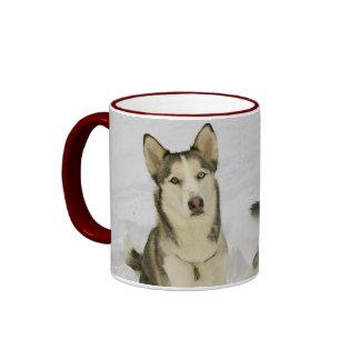 Huskies In The Snow Ringer Mug