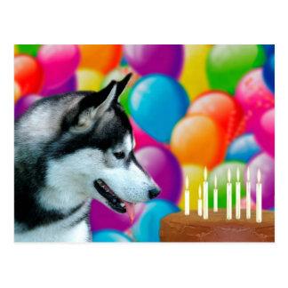 Husky Birthday Postcard