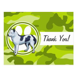 Husky; bright green camo, camouflage post card