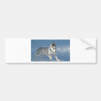 Husky Bumper Stickers