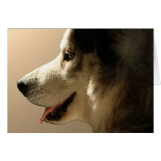 Husky Card Alaskan Malamute Card Personalized
