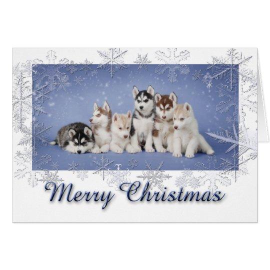 Husky Christmas Card