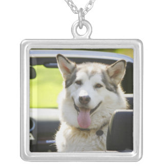 Husky dog from convertible square pendant necklace
