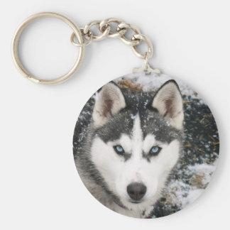 Husky dog key ring