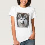 Husky Dog Ladies T-Shirt