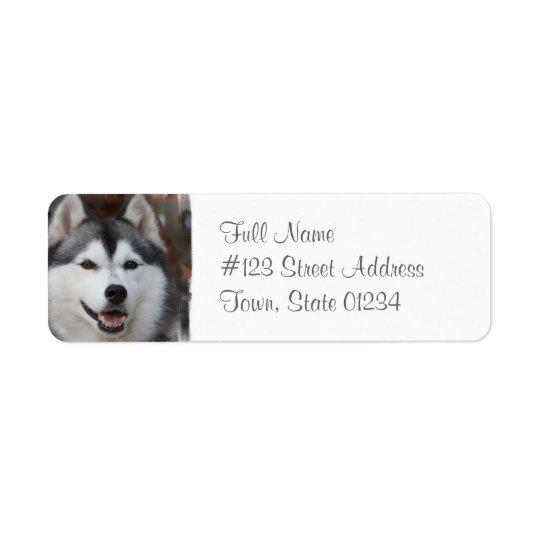 Husky Dog Return Address Label