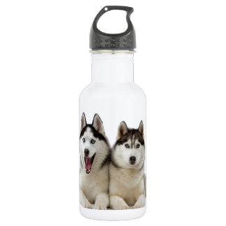 Husky Dogs 532 Ml Water Bottle
