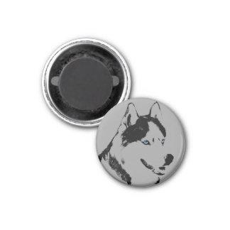 Husky Fridge Magnet Alaskan Sled Dog Magnet / Gift