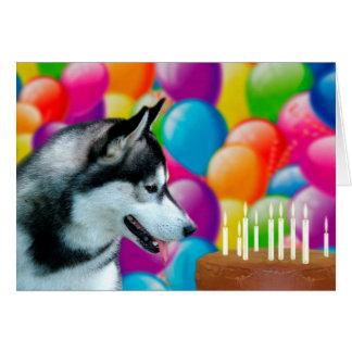 Husky Happy Birthday Greeting Card