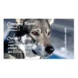 Husky in Snow Business Cards