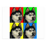 Husky Malamute Goes Primary Collage Post Cards